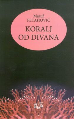 Koralj od divana(prednja korica)
